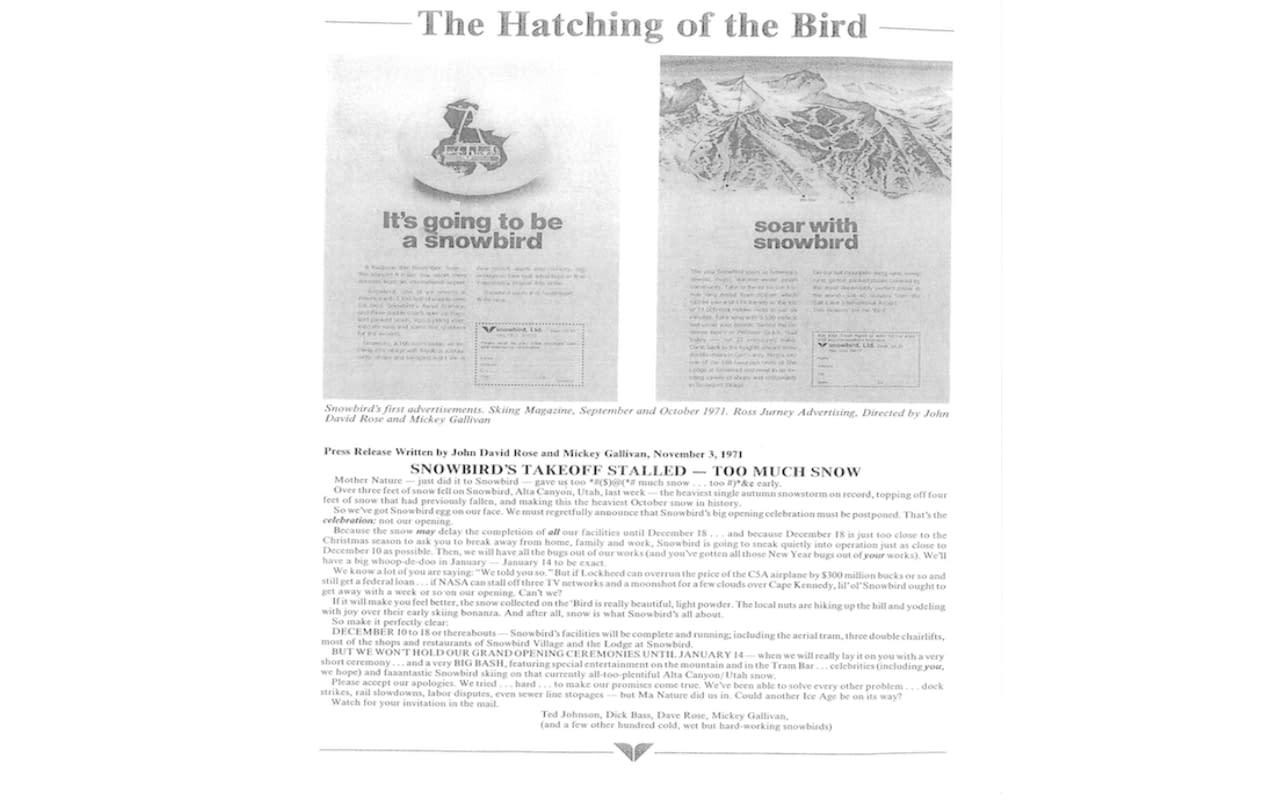 Hatching of the Bird